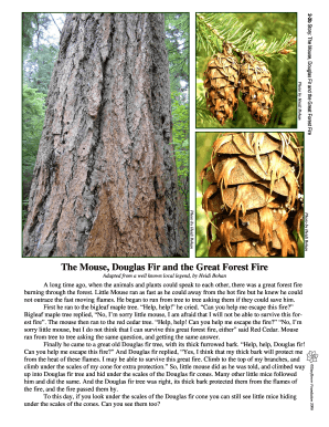 2-2b Story: The Mouse, Douglas Fir and the Great Forest Fire