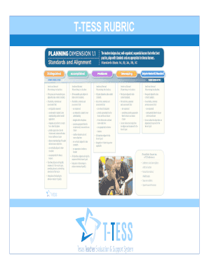 picture relating to T-tess Rubric Printable titled T-TESS RUBRIC Fill On-line, Printable, Fillable, Blank