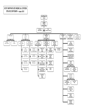 downstate medical center organizational diagram form