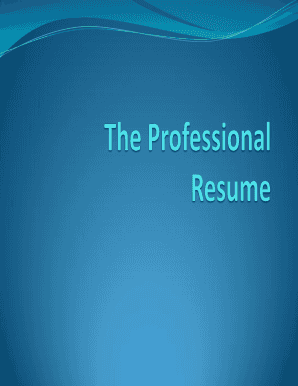 Professional fillable resume form