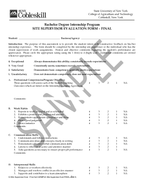 Captivating Sample Final Site Supervisor Evaluation