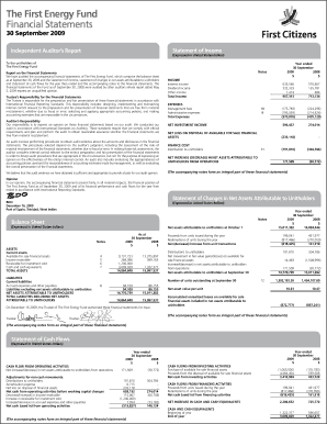 Fillable Online The First Energy Fund Financial Statements