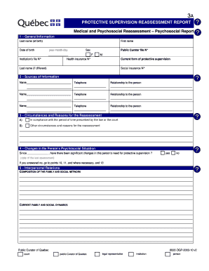 Report Template Forms - Fillable & Printable Samples for PDF, Word ...