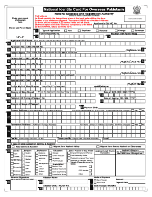 Overseas Nic Hd Form - Fill Online, Printable, Fillable, Blank ...