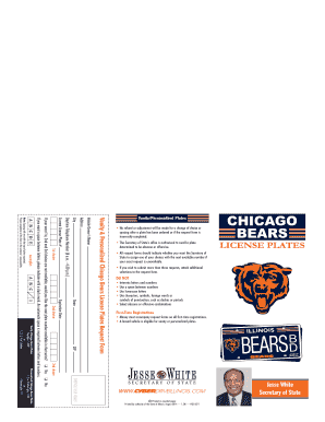 Chicago Bears Brochure - CyberDrive Illinois