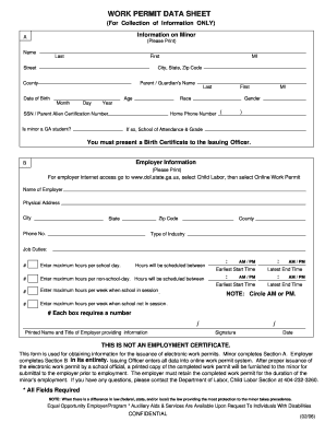 work permit for georgia form