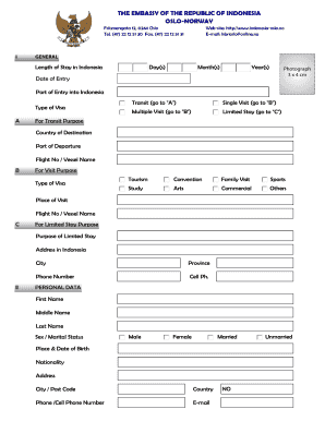 Indonesia Visa Application Form - Fill Online, Printable, Fillable ...