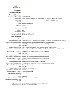 75 Printable Europass Curriculum Vitae Forms And Templates