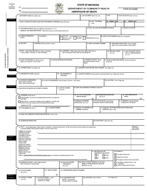 Death certificate form templates fillable printable samples michigan death certificate form yadclub Gallery