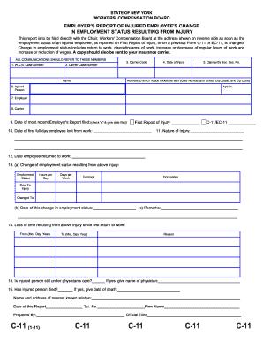 C11 Form - Fill Online, Printable, Fillable, Blank | PDFfiller