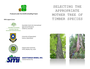 Selecting the Appropriate Mother Tree for Timber bb - Rainforestation