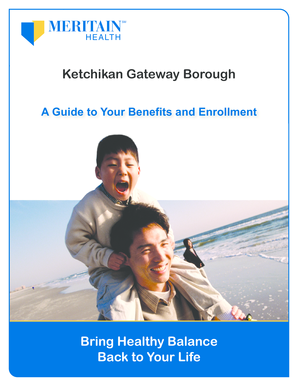 Fillable Online borough ketchikan ak A Guide to Your ...