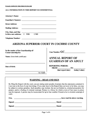 Arizona superior court in cochise county annual report of guardian of ...