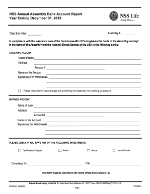 Edit fill out print download online templates in word pdf nss annual assembly bank account report year ending spiritdancerdesigns Gallery