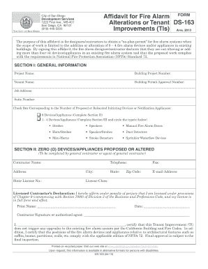ds163 visa application form