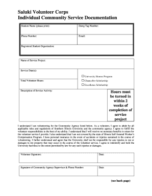 Individual Volunteer Documentation Form - Center for Service - cslv siu