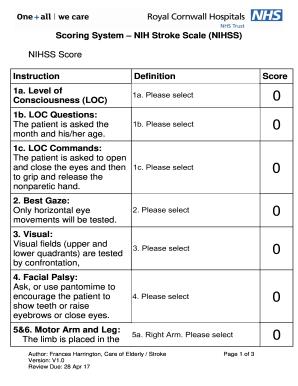 Nihss Score