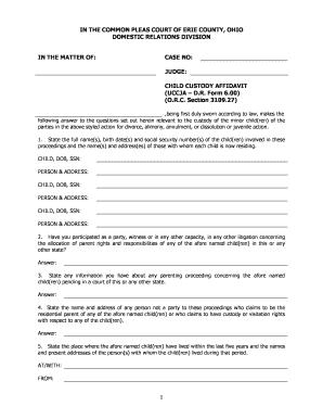 Bill of sale form ohio child custody form templates fillable child custody affidavit form 600doc altavistaventures Choice Image
