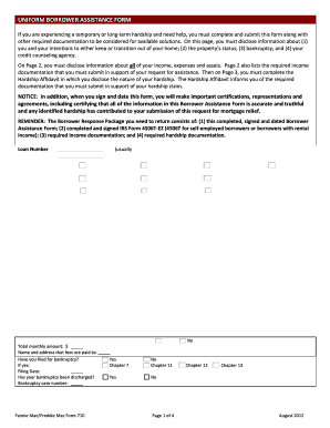 UNIFORM BORROWER ASSISTANCE FORM - Sun National Title and