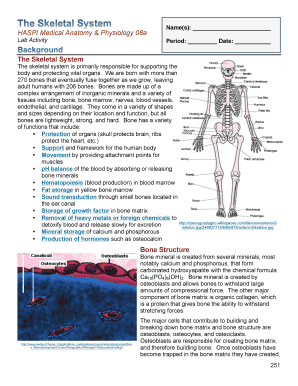 anatomy and physiology lab paper essay Anatomy and physiology of the human body in this section i will explain each of the stages of digestion where the food travels from the mouth into each section of the digestive system published: tue, 03 oct 2017.