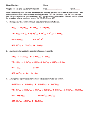 fillable online honor chemistry name chapter 13 net ionic equations worksheet i date period. Black Bedroom Furniture Sets. Home Design Ideas
