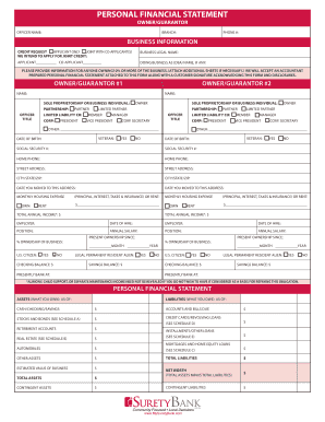 PERSONAL FINANCIAL STATEMENT   Surety Bank Of DeLand FL  Personal Monthly Expense Report Template