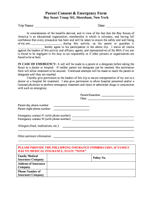 bsa activity consent form - Edit, Print, Fill Out & Download ...