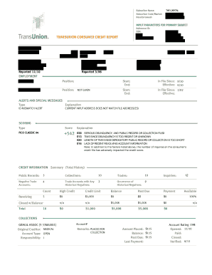 10 Printable free transunion credit report Forms and Templates
