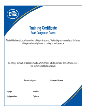 Training Certificate   CIFFA