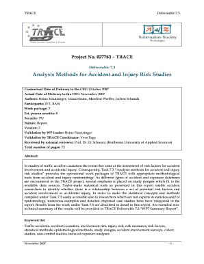 Analysis Methods for Accident and Injury Risk bb - TRACE project