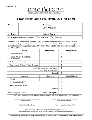 2013 Audit Fee Invoice And Timesheet Final.doc  Write Invoice