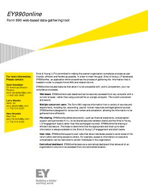 Fillable Online EY990online Form 990 web-based data-gathering tool