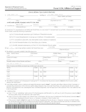Fillable Online I-134 Example Form - VisaJourney Fax Email Print ...