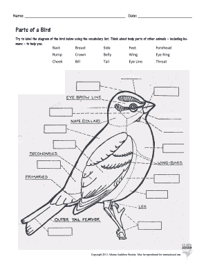 Label Parts Of A Bird Worksheet Fill Online Printable Fillable Blank Pdffiller