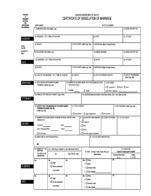 How to fill out divorce papers yourself forms and templates participante information fill up all detail form joint divorce ontario form solutioingenieria Images