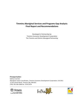 Timmins Aboriginal Services and Programs Gap Analysis: Final ...
