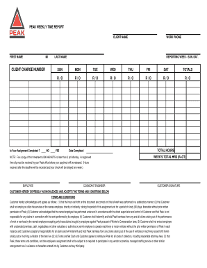 peak technical staffing weekly time report form