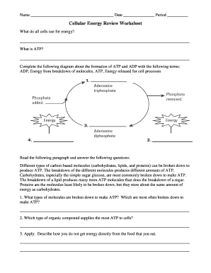 Fillable Online Cellular Energy Review Worksheet - CDLI Fax ...