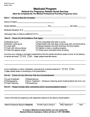 Fillable Online BHSF Form 9-M - Referral for pregnancy related ...