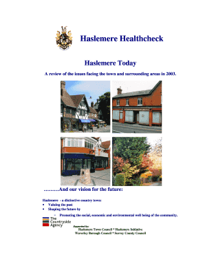 Haslemere Healthcheck Haslemere Today 2003 - Haslemere Vision