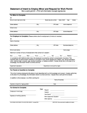 Fillable Online Work Permit Application Santa Cruz City