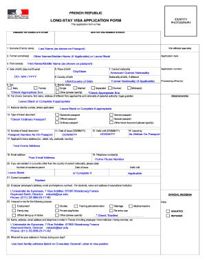 France Long Stay Visa Application Form Fill Online Printable Fillable Blank Pdffiller