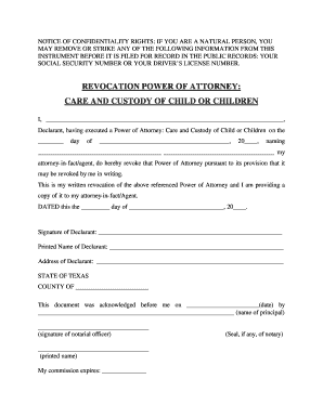 power of attorney child care