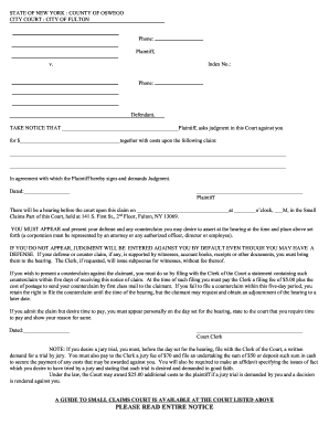 Get small claims court new york state PDF Form Samples to