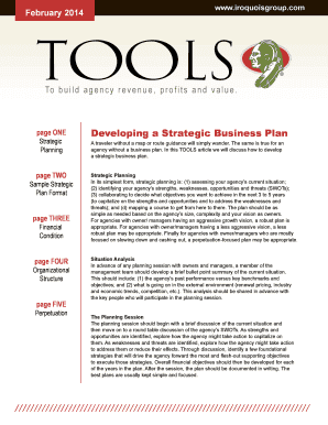 Developing a Strategic Business Plan - The Iroquois Group