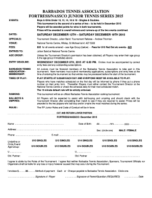 tax declaration form pdf 2015
