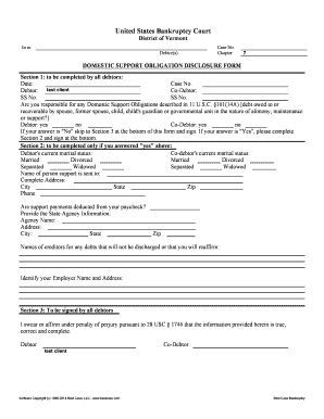 Domestic Support Obligation Disclosure Form