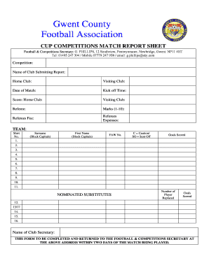 111 Printable Football Score Sheet Forms and Templates
