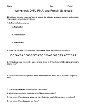 Worksheet On Dna Rna And Protein Synthesis Answers - best ...