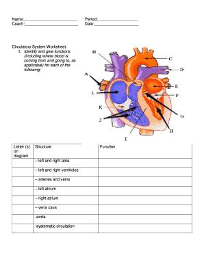Heart Diagram Worksheet Fill Online Printable Fillable